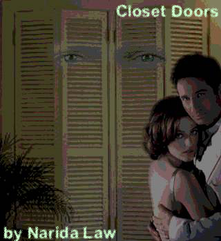 Book Cover: Closet Doors by Narida Law