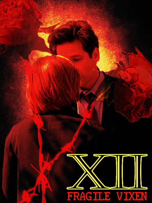 Book Cover: XII by FragileVixen