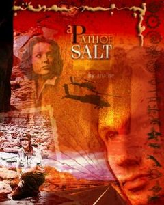 Book Cover: Path of Salt, A by Analise