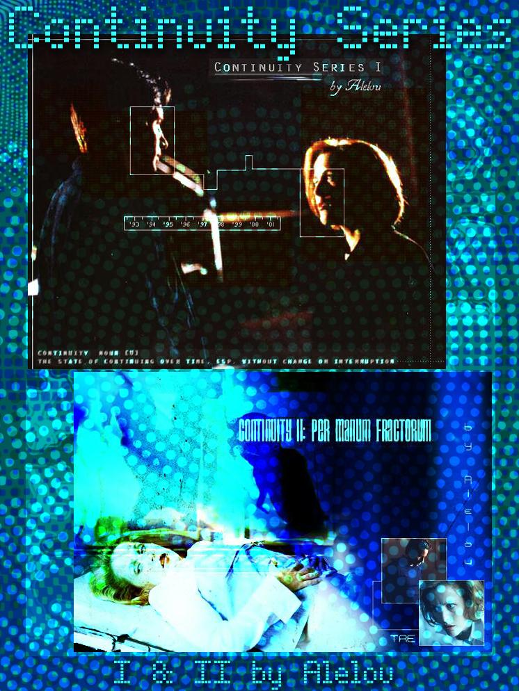 Continuity Series I & II by Alelou
