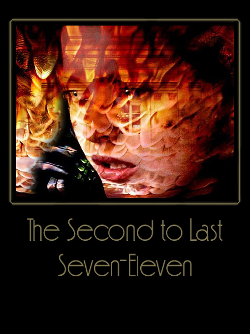 Book Cover: Second to Last Seven Eleven by Punk & Sab