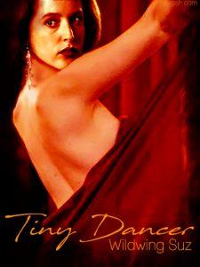 Book Cover: Tiny Dancer by Wildwing Suz