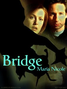 Book Cover: Bridge by Maria Nicole