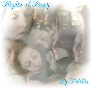 Book Cover: Flights of Fancy by Pebbles