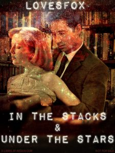 Book Cover: In the Stacks & Under the Stars by LovesFox