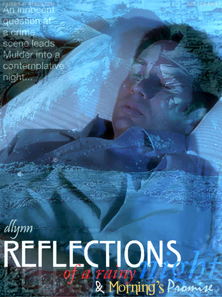 Book Cover: Reflections of a Rainy Night & Morning's Promise by DLynn