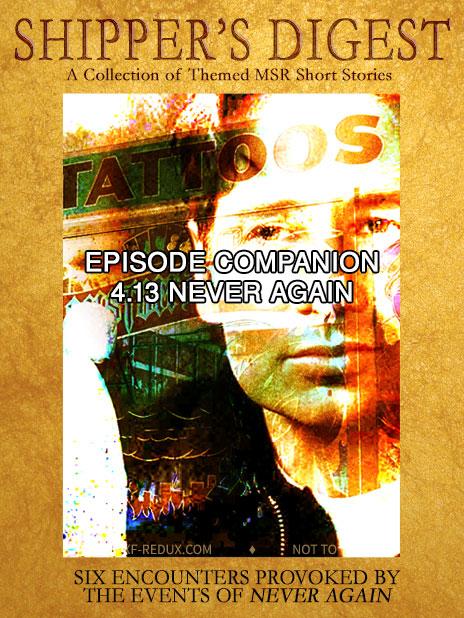 Book Cover: Shipper's Digest 413: Never Again