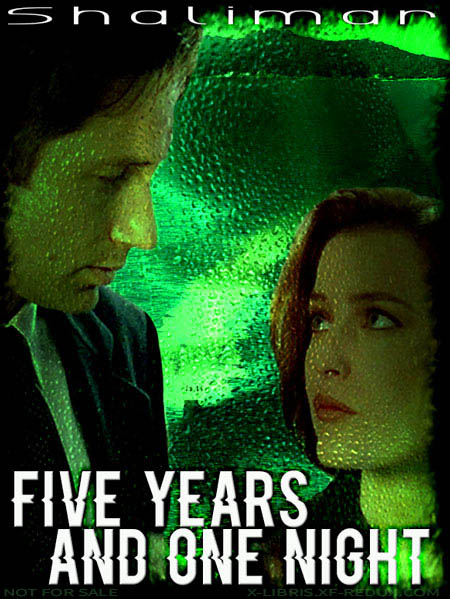 Book Cover: Five Years and One Night by Shalimar