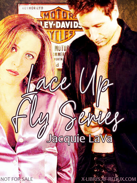 Book Cover: Lace-Up Fly series by Jacquie LaVa
