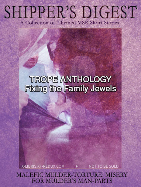 Book Cover: Shipper's Digest 04: Fixing the Family Jewels