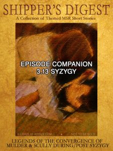 Book Cover: Shipper's Digest 313: Syzygy Convergences