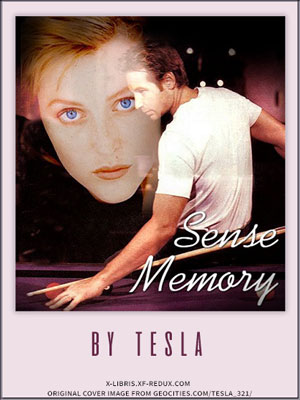 Book Cover: Sense Memory by Tesla