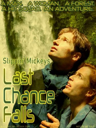 Last Chance Falls by Slippin' Mickeys