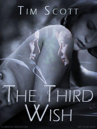 Third Wish, The by Tim Scott