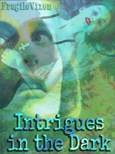 Intrigues in the Dark cover
