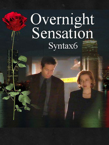 Overnight Sensation cover