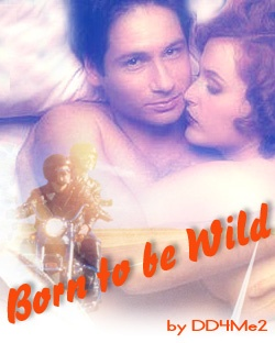 Born to be Wild by DD4Me2