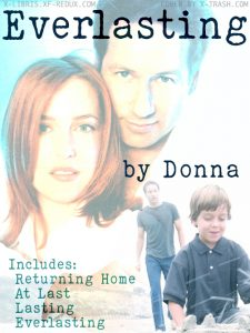 Book Cover: Everlasting by Donna