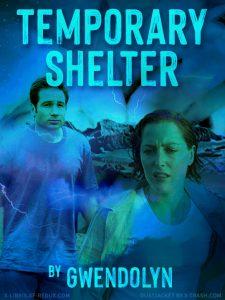 Temporary Shelter cover
