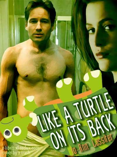 Like a Turtle on its Back by Jo-Ann L