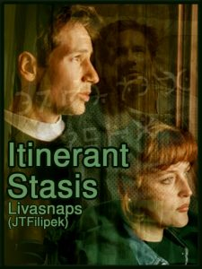 Itinerant Stasis cover